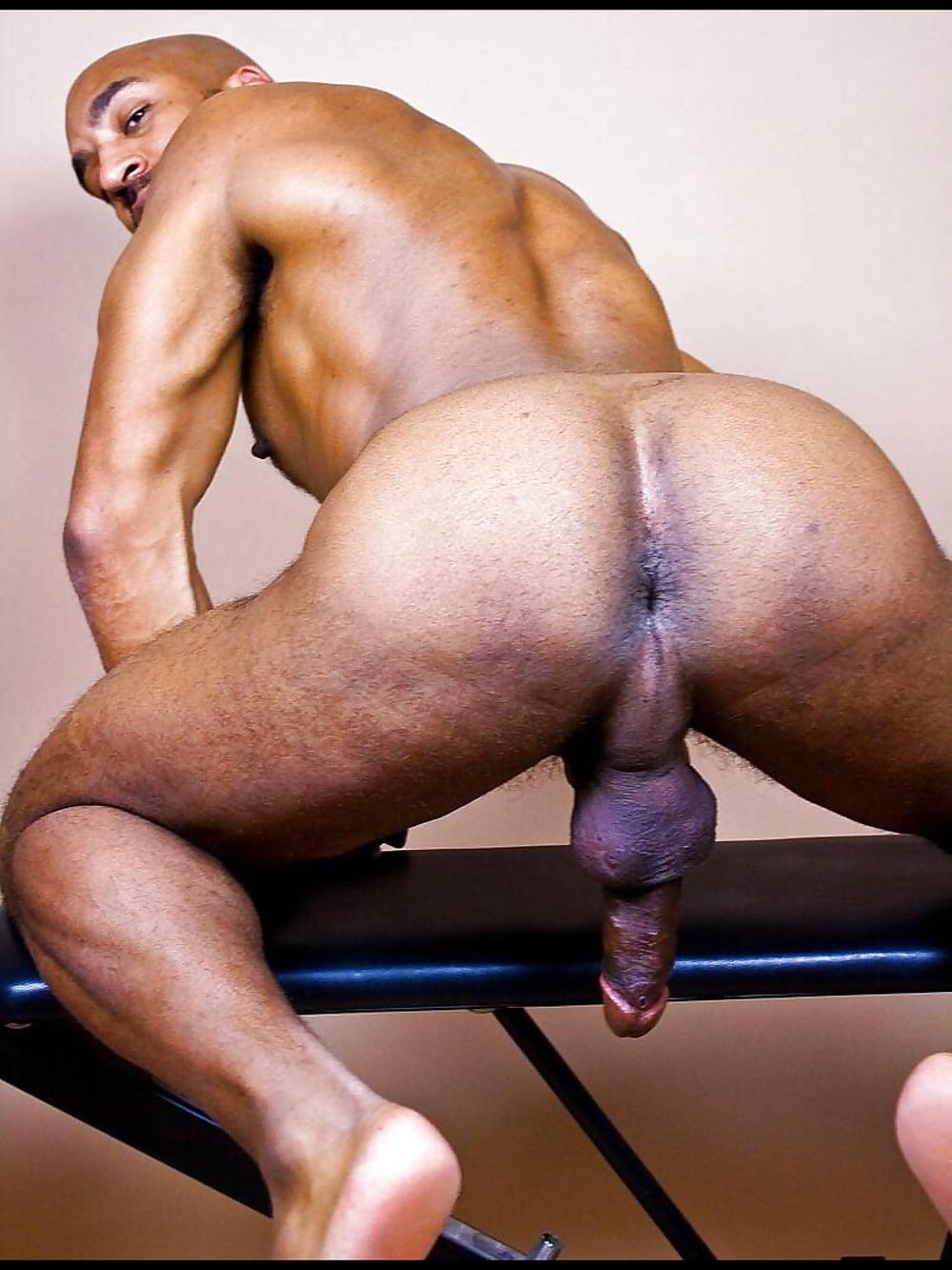 Big Gay Black Ass, Homo Pics