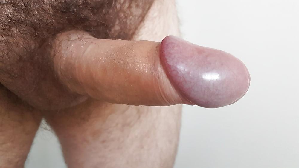 dick Suck my uncut
