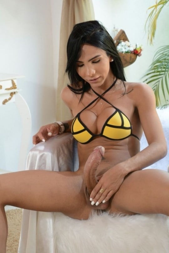 Hot hung shemale galleries