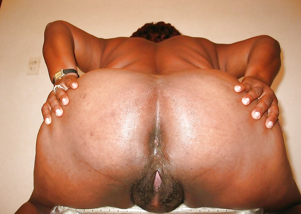 Black bbw shemale asshole