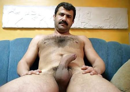 orient bear sex tube