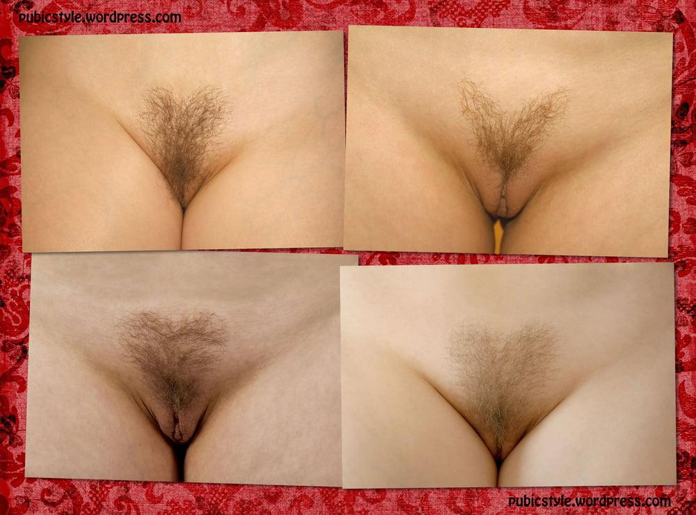 Hair around the vagina