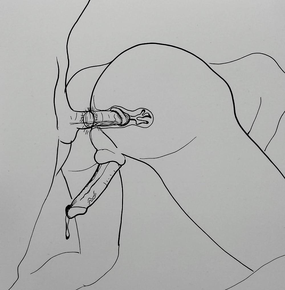 Наглядная анатомия порно видео — img 8