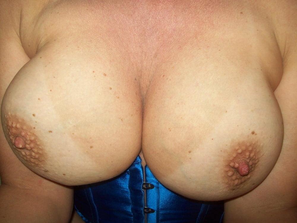 My ass Wildcat - 22 Pics