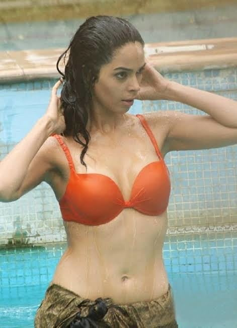 Mallika sherawat sexy porn-4928