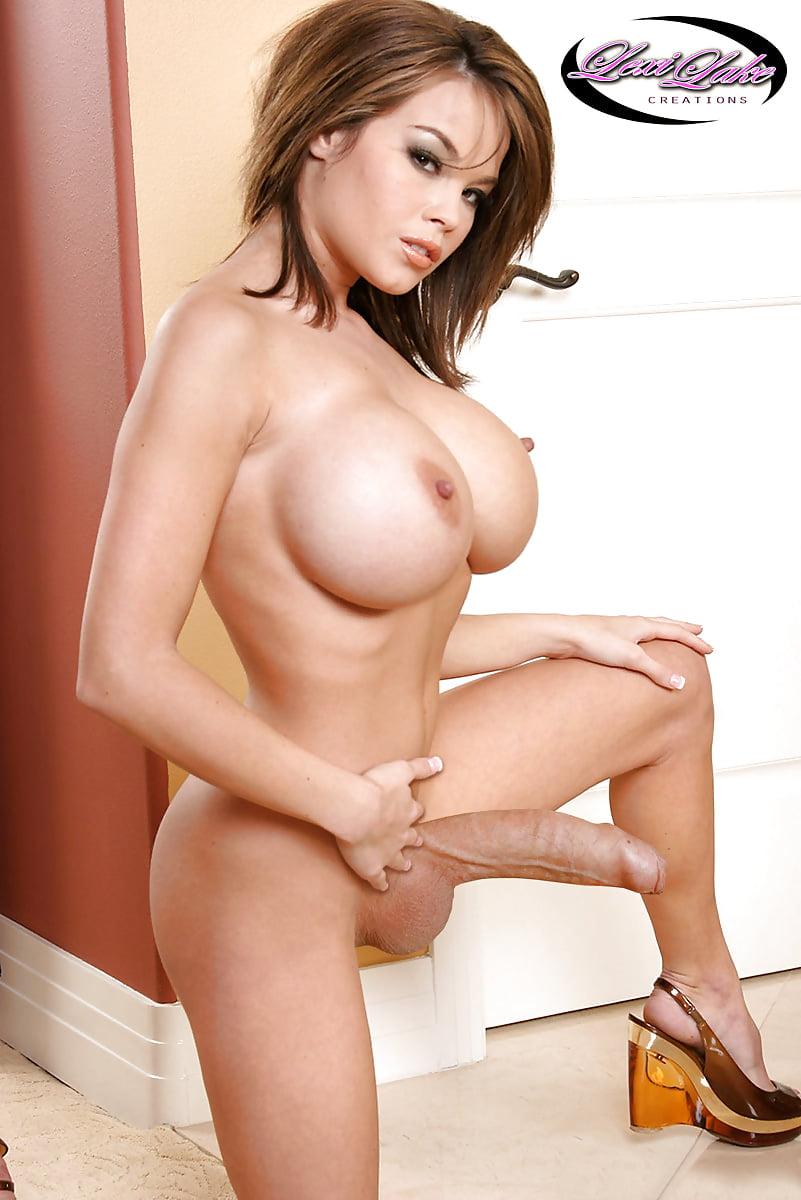 Big tits shemale porn