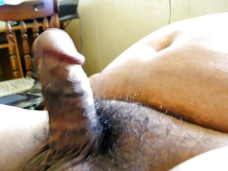 gay penis pics Chubby