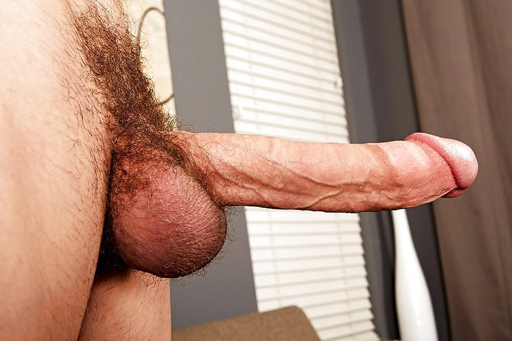 Close up view of a hairy dick of a guy