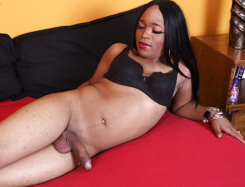 Chanel couture gets naked for a fuck on black shemale hardcore