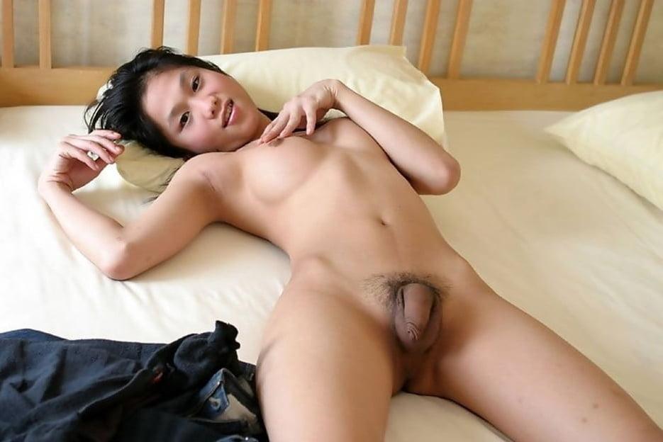 Ladyboys shemales transexuals korea